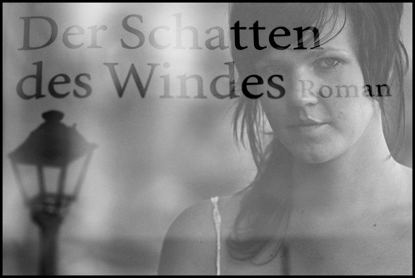 ___der schatten des windes_