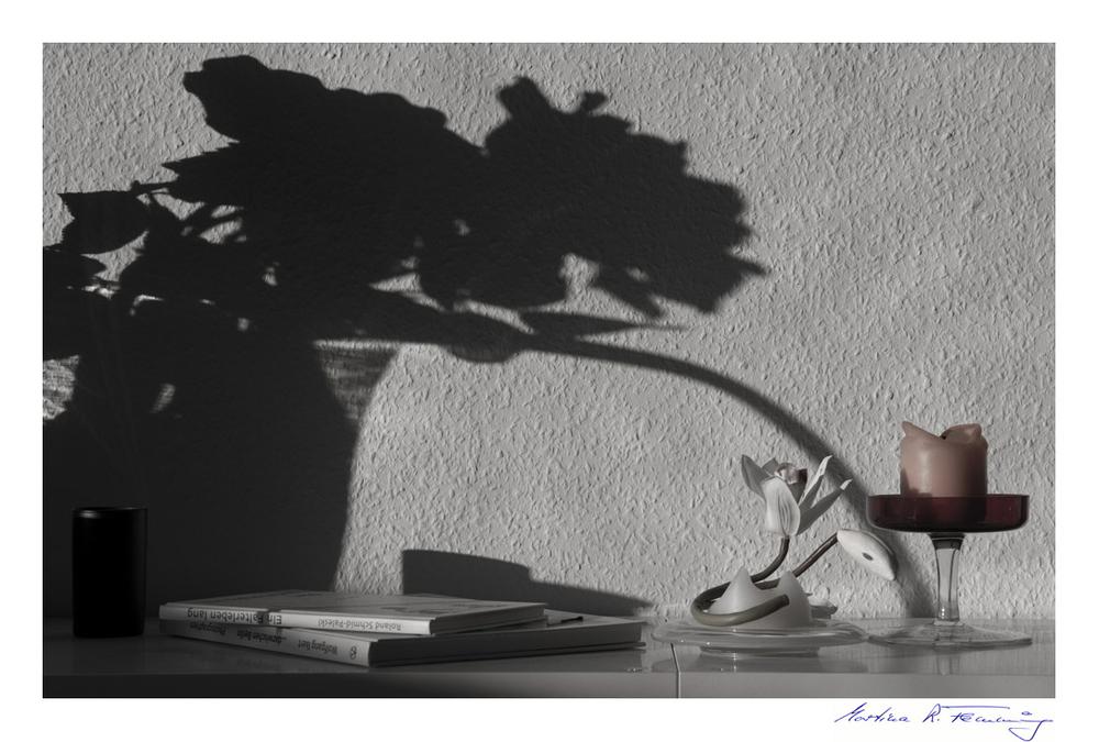 Der Schattendieb
