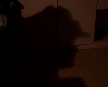 Der Schattenmann - unglaubliche Täuschung