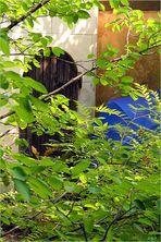 Der Schirm versteckt sich neben der Tür zum Geräteschuppen um nicht weiter fotografiert zu werden!