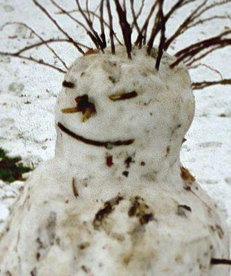 Der Schneemann ist ein Punk!