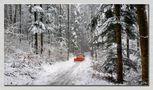 der Schneepflug von Juan