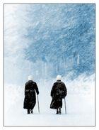 der schneesturm