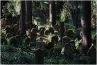 Der schöne jüdische Friedhof in Trebic