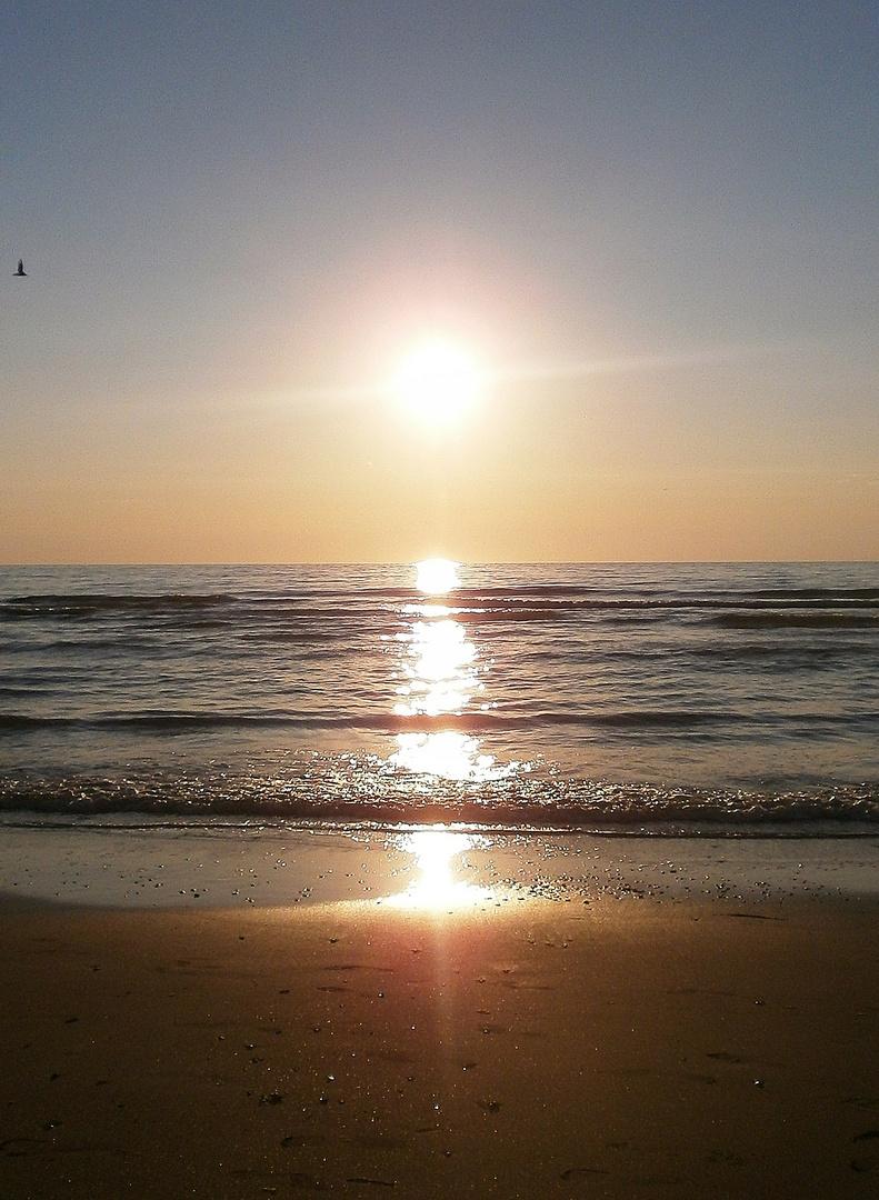 Der schöne Sonnenuntergang am Strand