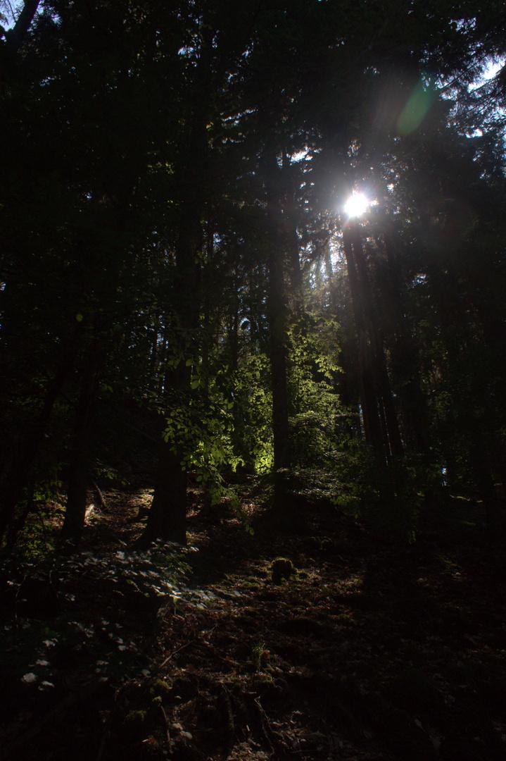 Der Schritt in die Dunkelheit