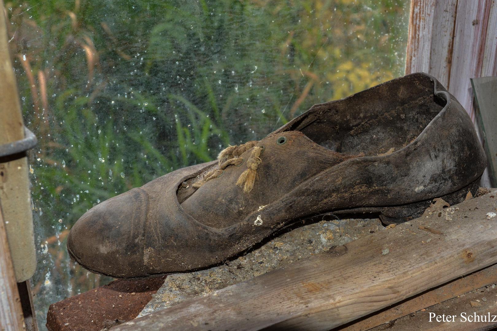 Der Schuh von Aschenputtel.
