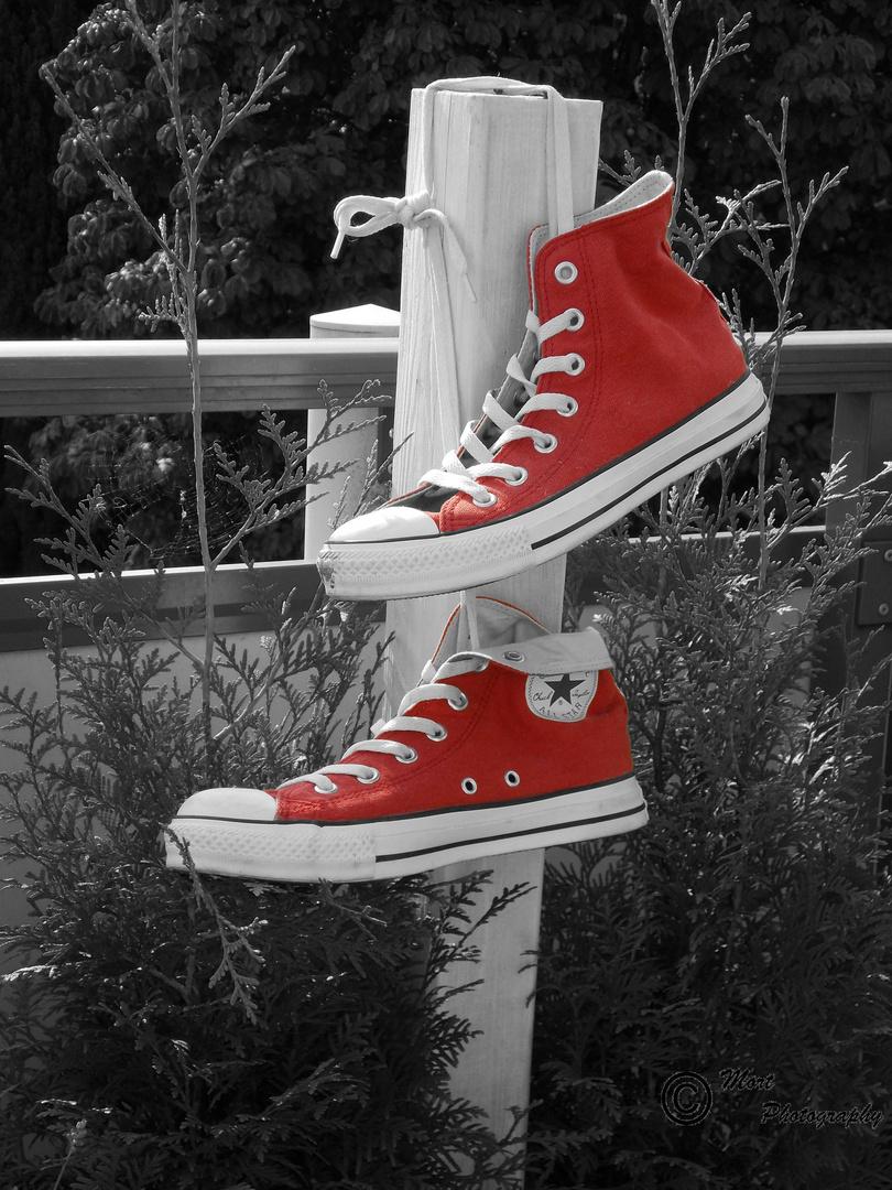 Der Schuhschrank