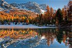 Der See der goldenen Bäume