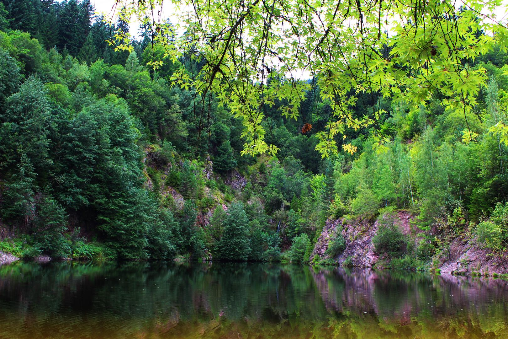 Der See, der Silbersee
