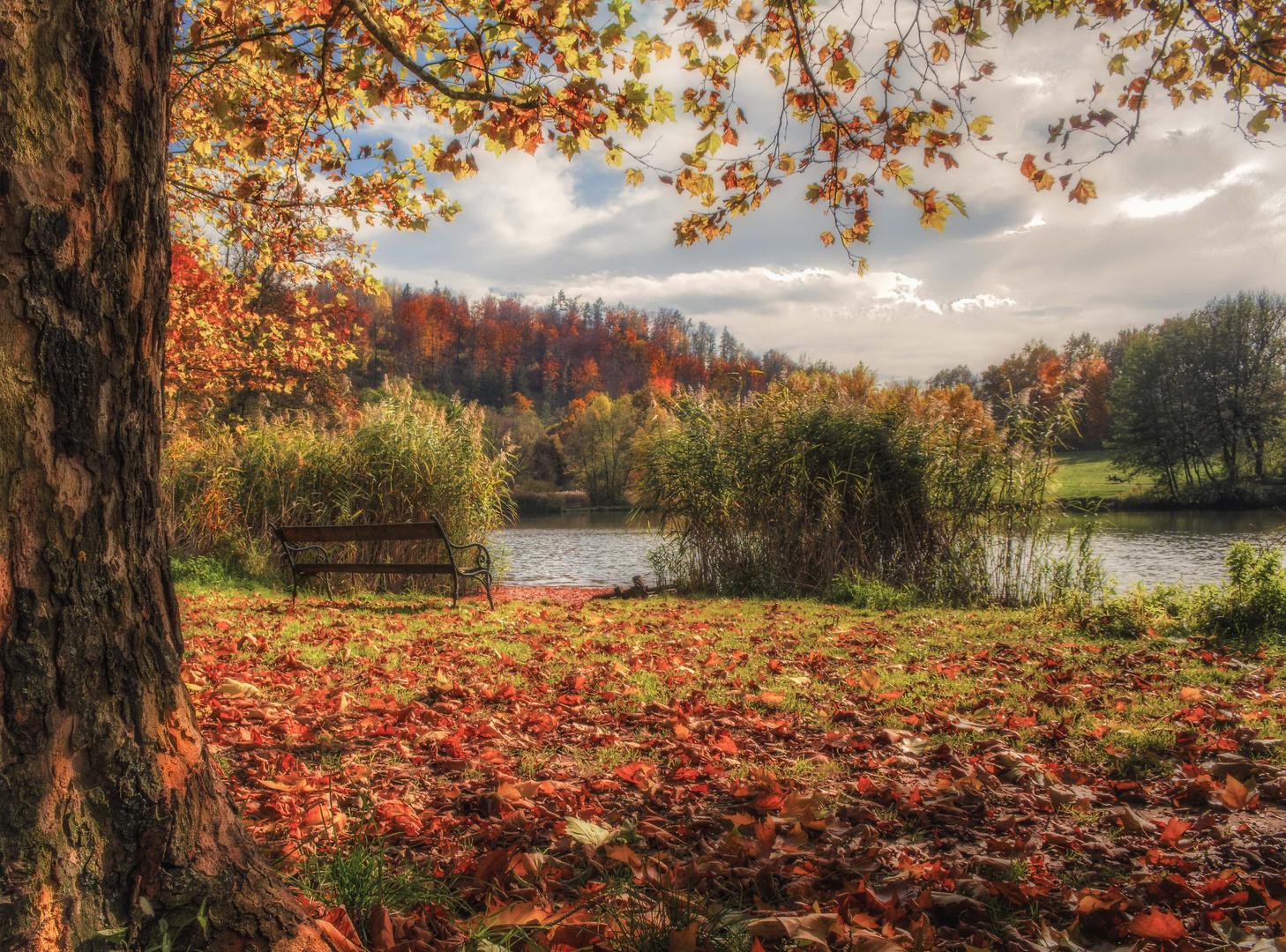 Der See im Herbst