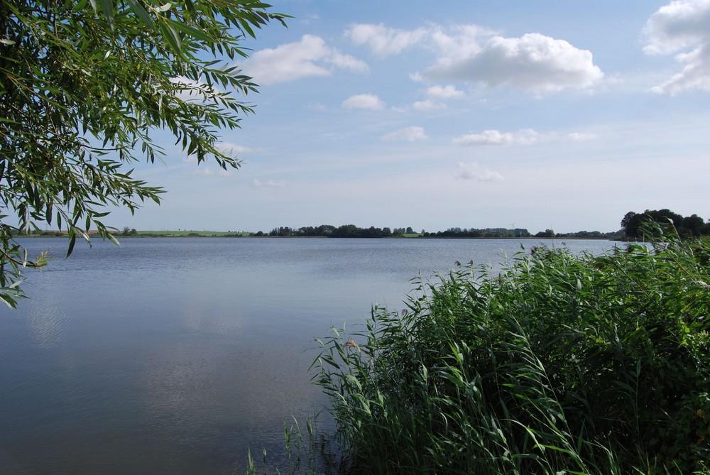 Der See in Angermünde ( Uckermark )