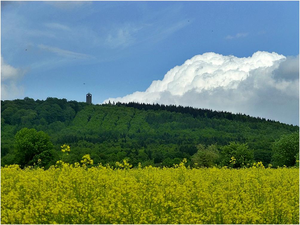 Der Sollingturm