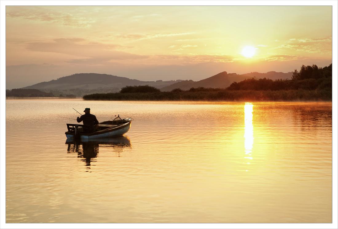 Der Sonne entgegen ... 08.2013
