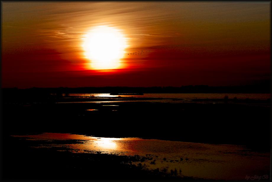 ...der Sonne entgegen...