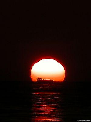 """""""der Sonne entgegen"""""""