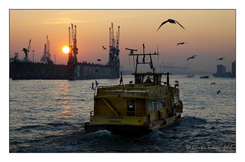 Der Sonne entgegen im Hamburger Hafen
