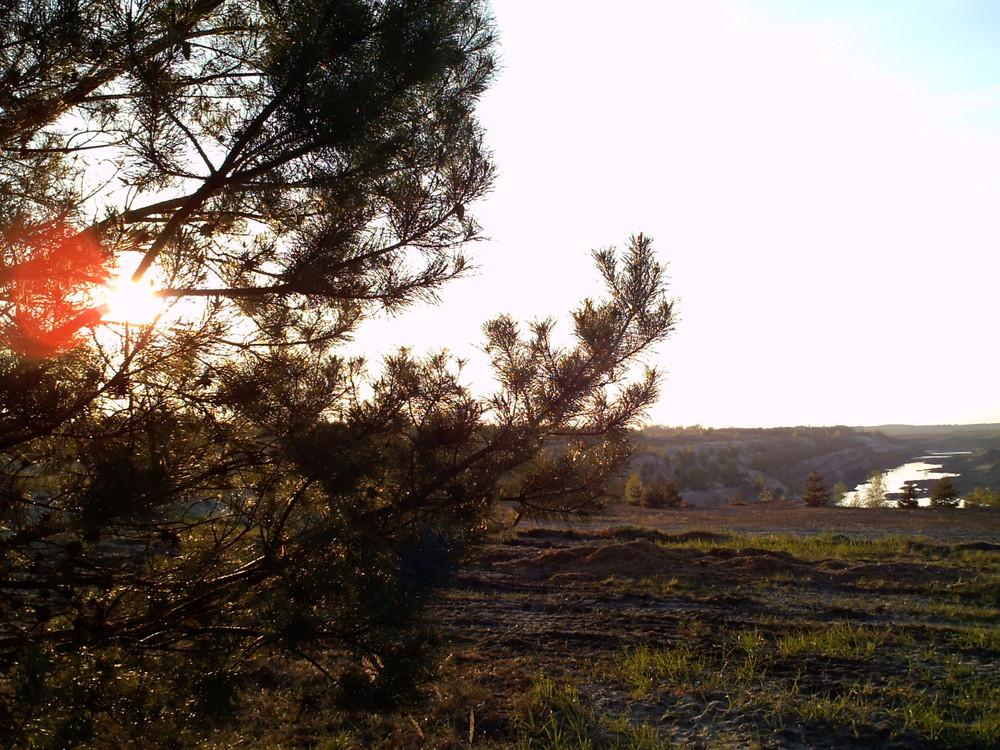 der Sonne entgegen - unendliche Weiten [2009|04|20]