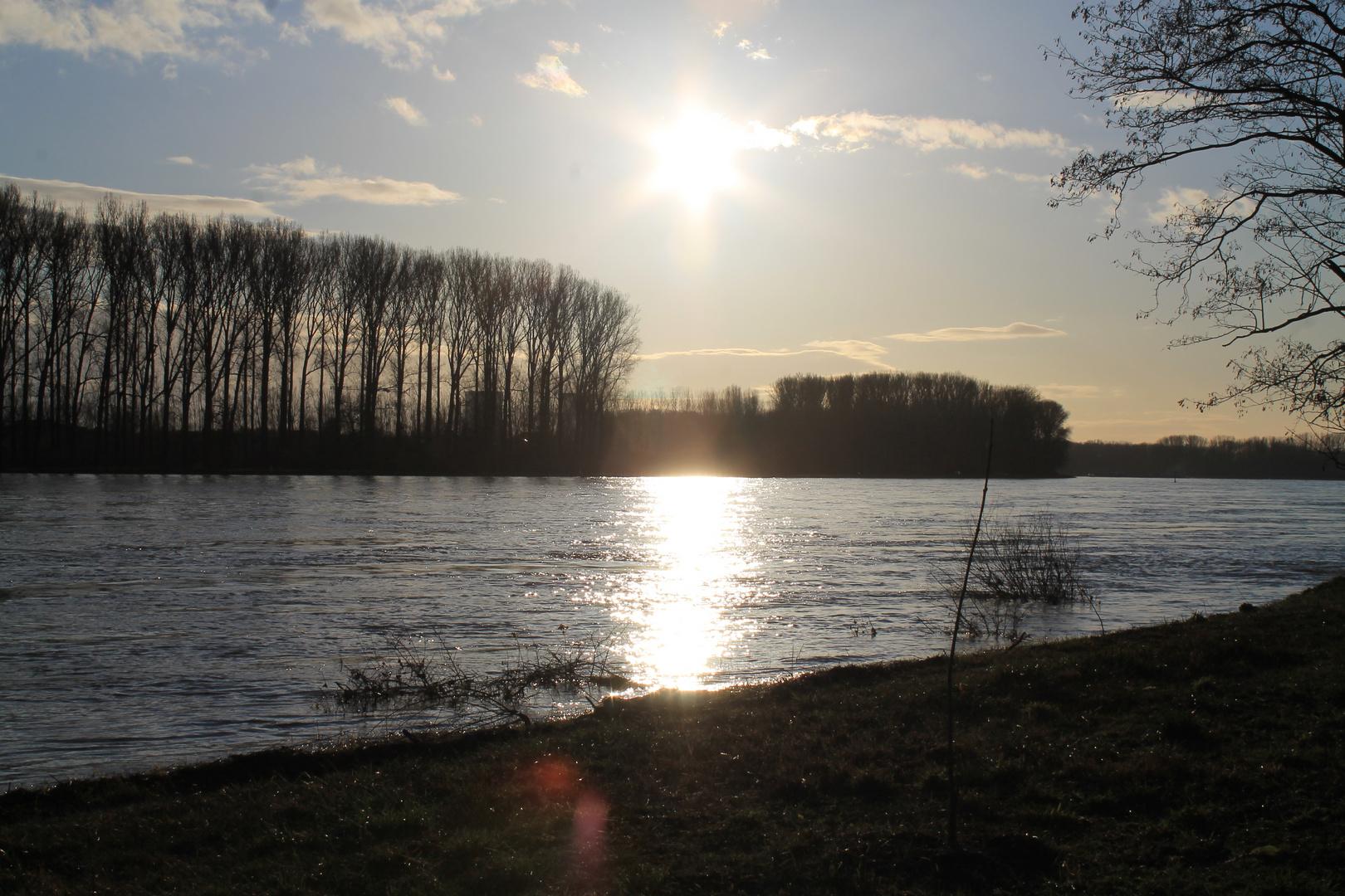 Der Sonnenuntergang am Rhein