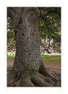 Der sprechende Baum ....