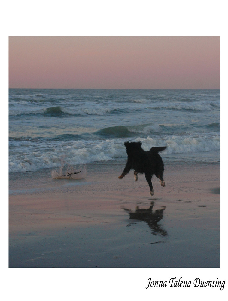 Der Sprung ins Meer