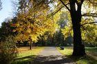 Der Stadtpark im Herbst 1
