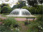 Der Stadtpark von Merzig