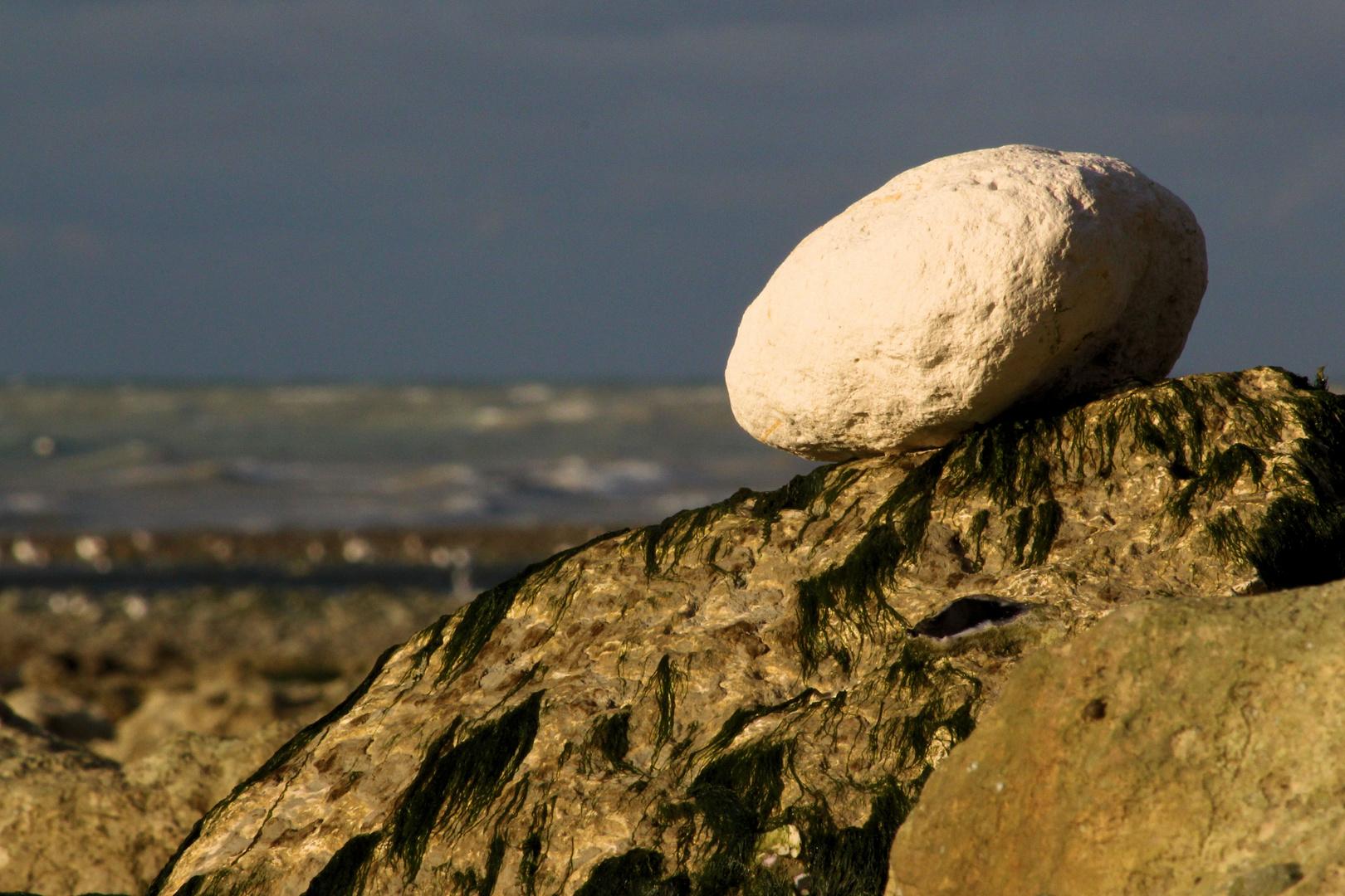Der Stein am Meer