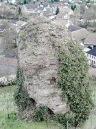 der stein