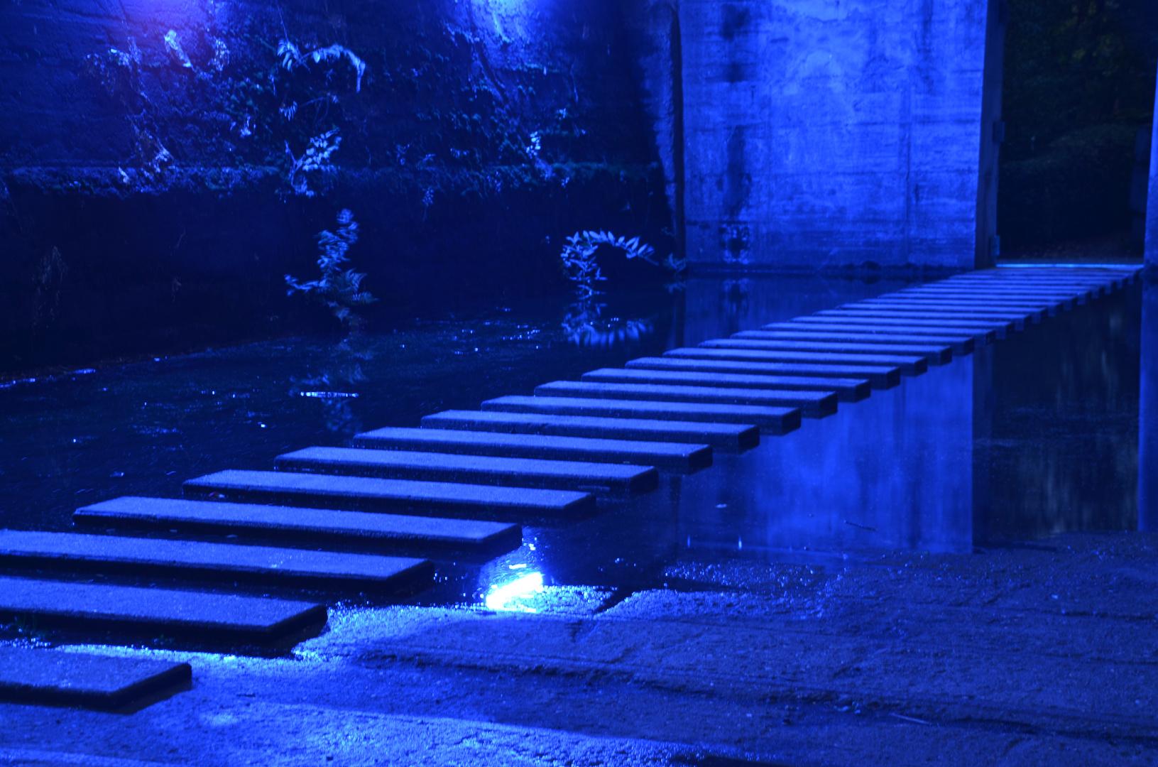 Der steinige Weg bei Nacht