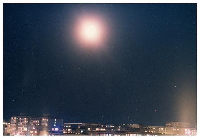 Der Stern von Erfurt 1