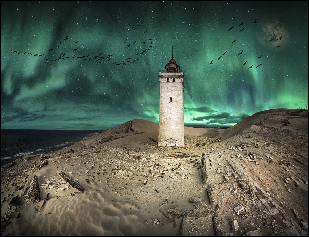der Sternchenflug der Mitternachtskraniche