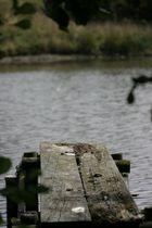 Der stille Teich mit Steg