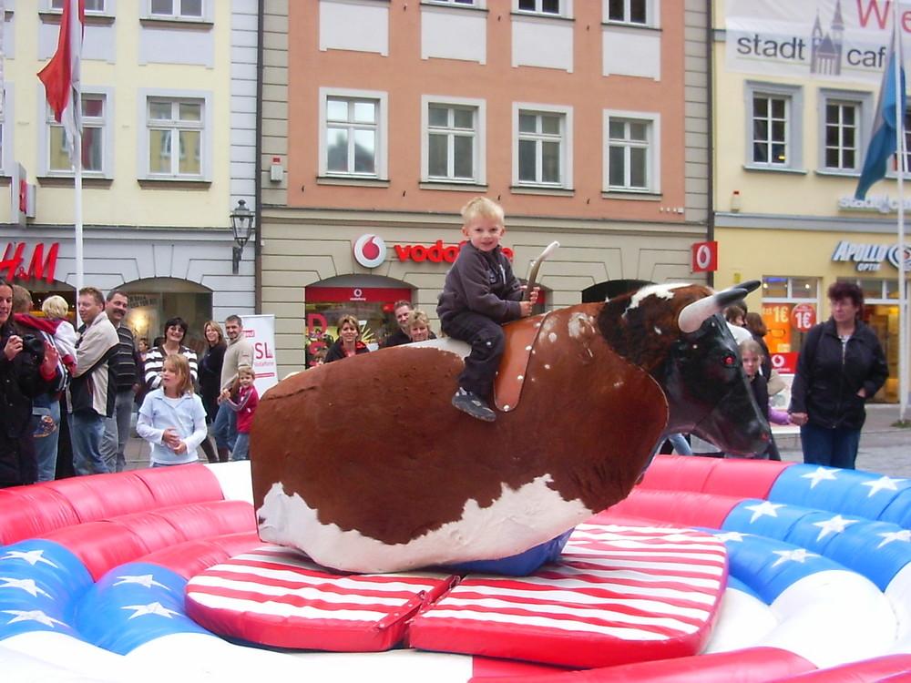 Der stolze Reitersmann