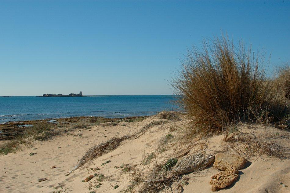 Der Strand bei Sancti Petri, Costa de la Luz