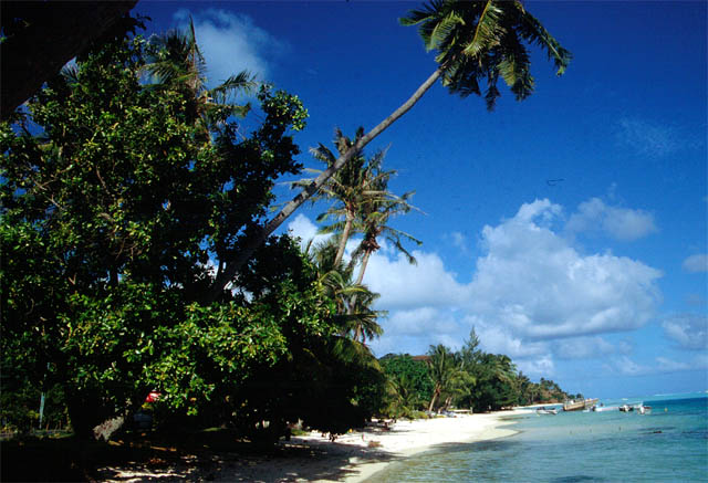 Der Strand von Bora Bora