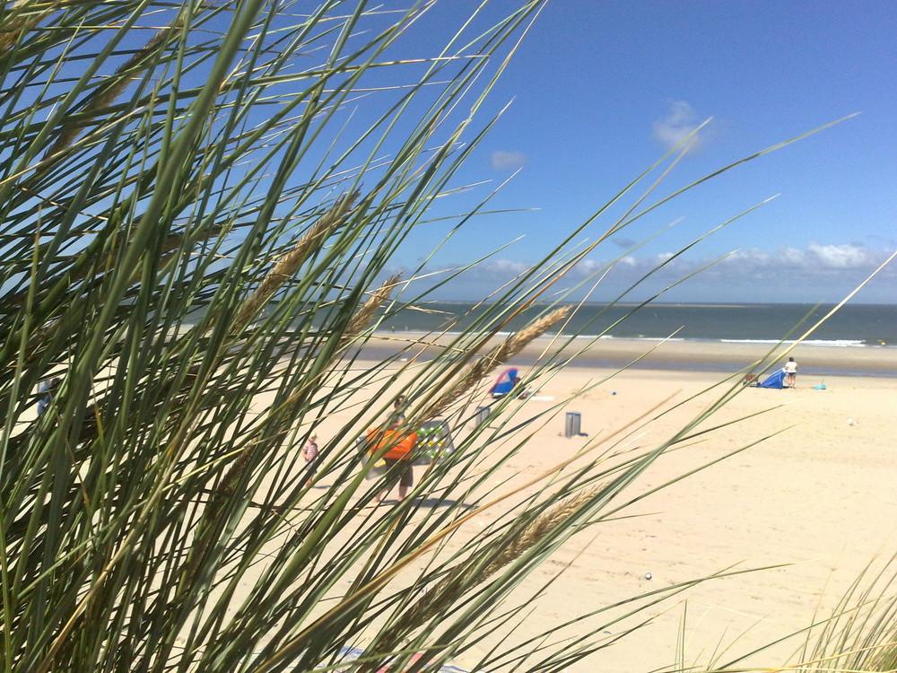 Der Strand von Renesse