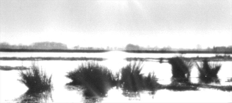 Der Tag am Moor (2. Teil)