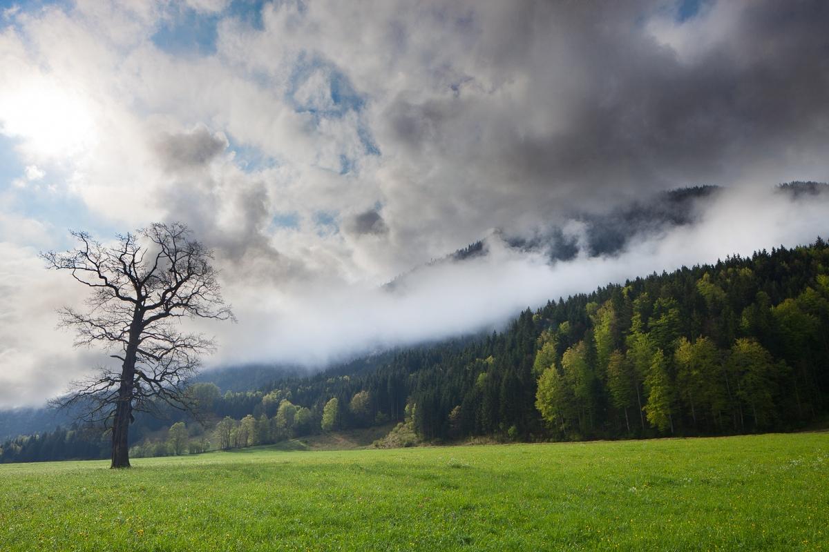 Der Tanz der Wolken