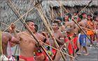 Der Tanz der Yanumami Männer