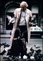Der Taubenfütterer