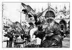Der Taubenjongleur (Venedig, Markusplatz)