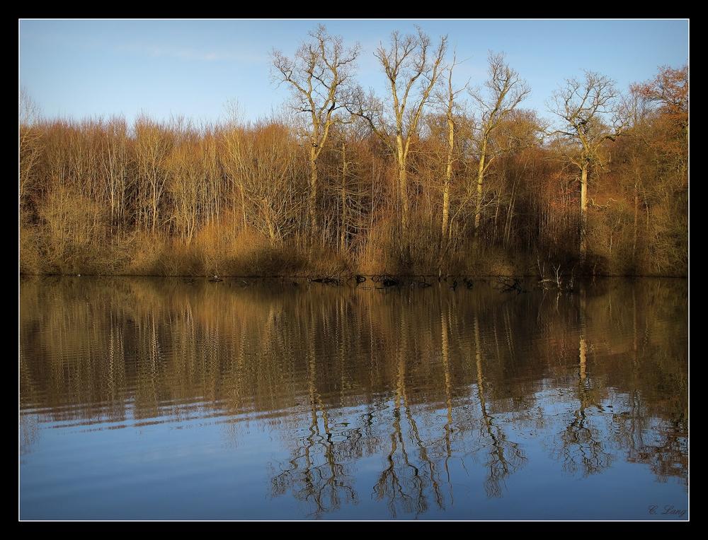 Der Teich II