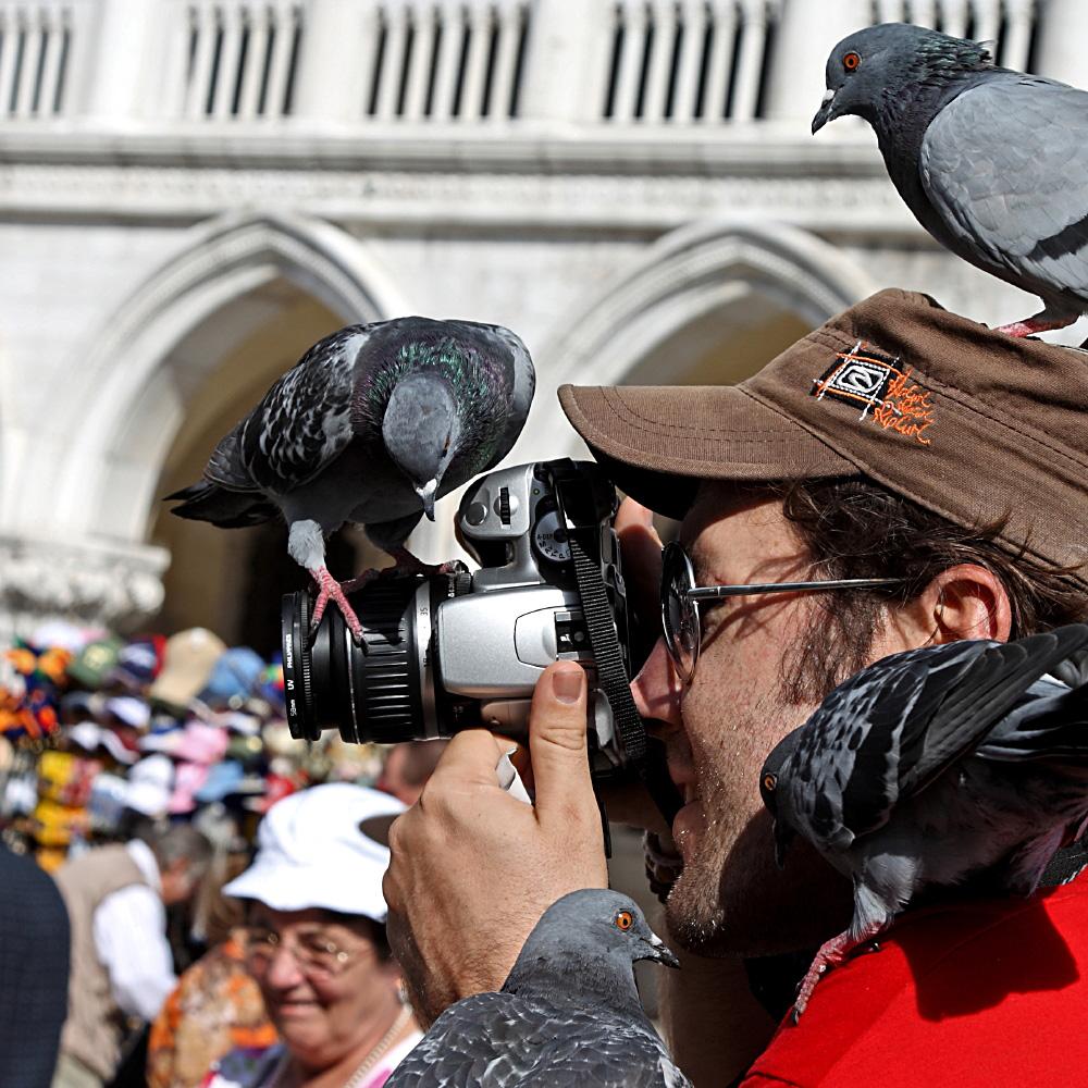 Der Tierfotograf