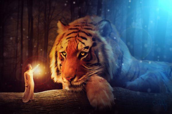 Der Tiger und das Mädchen