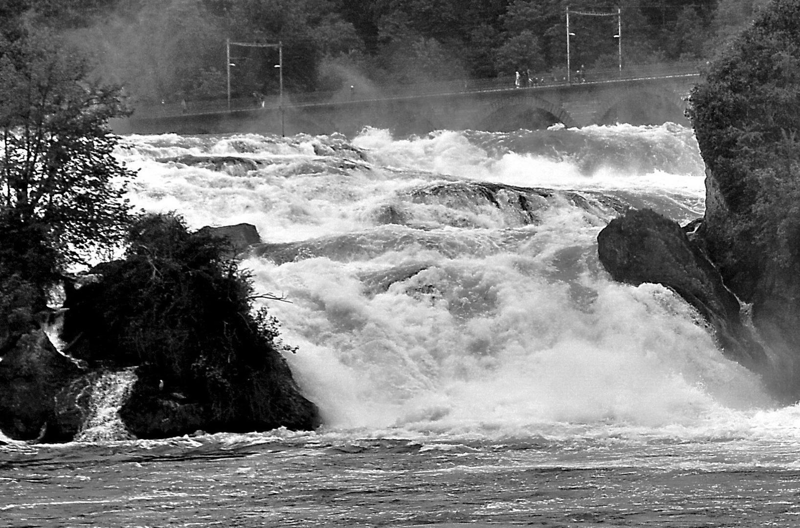 Der tosende Rheinfall