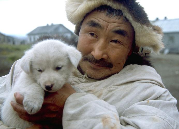 Der treue Gefährte des Menschen am Nordpolarkreis