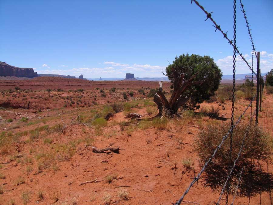 Der unendliche Zaun