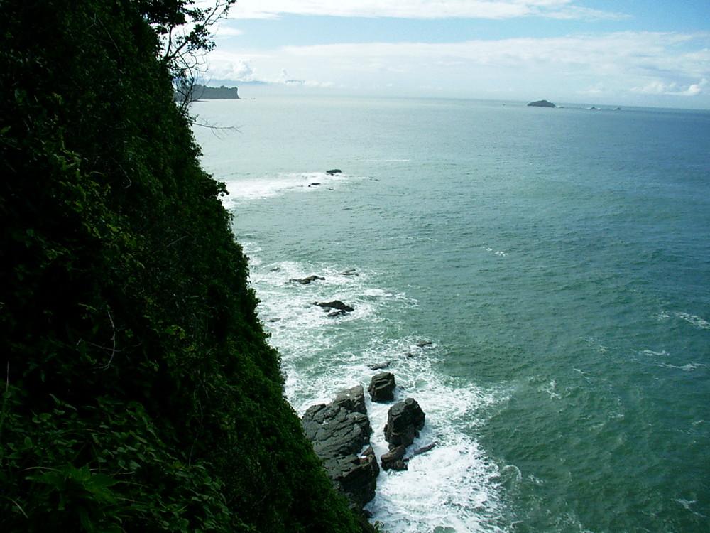 Der Urwald endet im Meer