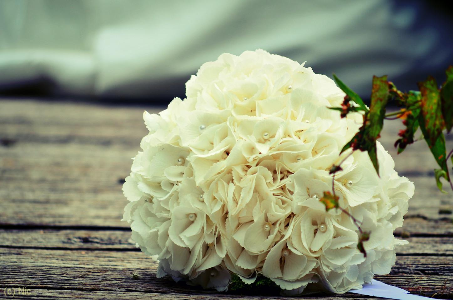 Der vergessene Brautstrauß